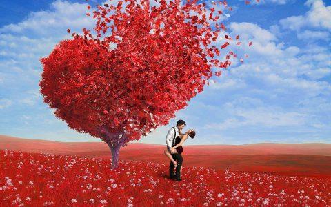 59_love-4831653_1920